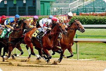 apuestas de caballos