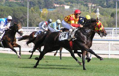 caballo-de-carrera