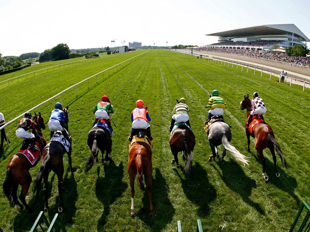 mejores carreras de caballos Los mejores videos de carreras de caballos