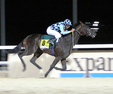 carrera-caballos