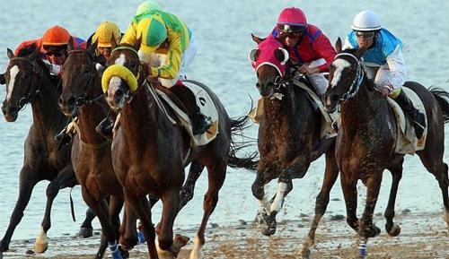 carreras de caballos Las mejores carreras de caballos del 2009