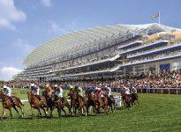 Apostar en las carreras de caballos