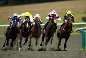 apuestas carreras caballos
