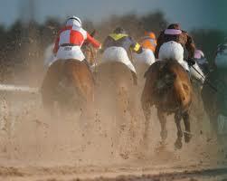 apuestas de caballos southwell