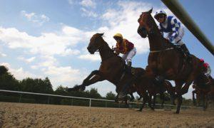 apuestas-carreras-caballos-ganar-dinero
