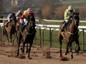 bet horse racing apuestas de caballos southwell