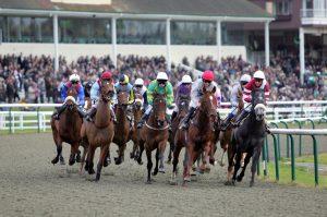 apuestas caballos GANAR DINERO HORSE RACING BETTING