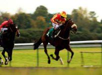 Apuestas de caballos en los hip?dromos de Newcastle y Newmarket, 27 de mayo