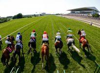 Apuestas de caballos en el hipódromo de York, 20 de agosto