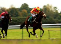Apuestas de caballos en el hip?dromo de Windsor, 4 de julio