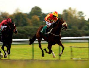 APUESTAS-CABALLOS-HORSE-RACING
