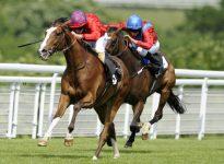 Apuesta de caballos en el hip?dromo de Kempton, 4 de enero