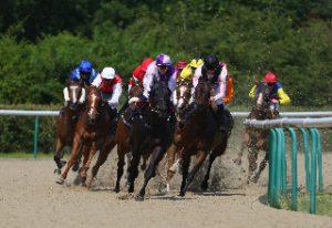 apuestas-caballos-wolverhampton-carreras-ganar-dinero