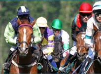 Apuestas de caballos en el Cheltenham Festival, 14 de marzo